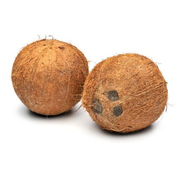 Kokosnoot product photo