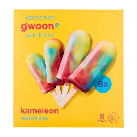 g'woon Regenboog ijsjes product photo