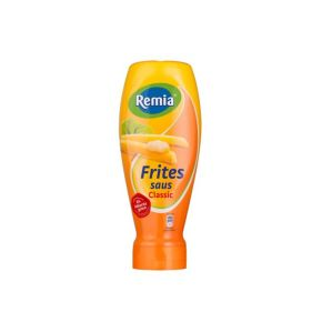 Remia Fritessaus product photo