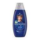 Schwarzkopf Shampoo for men product photo