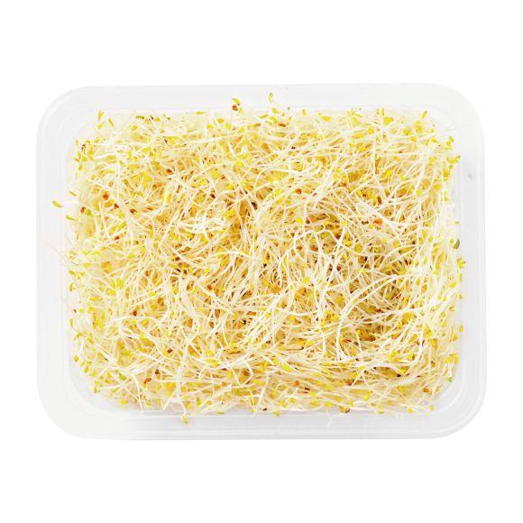 Alfalfa product photo