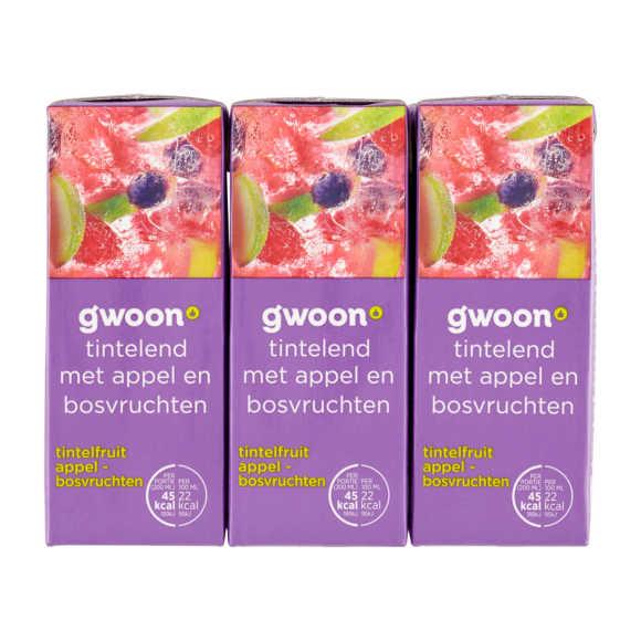 g'woon Tintelfruit appel bosvruchten 6 x 20 cl product photo
