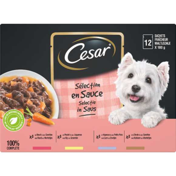 Cesar Adult selection in gelei product photo