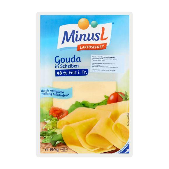 Minus L Lactose vrije plakken goudse kaas product photo